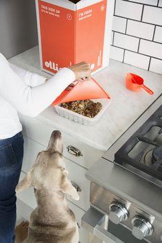 barking-good-i-nea-startup-epanastasi-sto-fagito-skilou-pou-mpori-na-katanalothi-ke-apo-anthropous-2