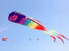 Large Trilobyte kite designed by Peter Lynn.