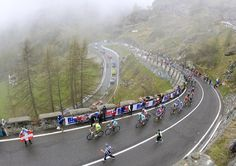 The pack rides uphill during the 14th stage of the Tour of Italy cycling race, on May 19, 2012, in Cervinia. AFP PHOTO / LUK BENIESLUK BENIES/AFP/GettyImages