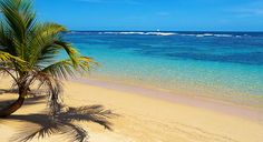 Have a good time at Puerto Costa Maya beach while in Costa Maya.