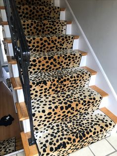 Merveilleux Stair Runners, Animal Prints, Stairs, Boston, Carpet, Carpet Stairs,  Staircases