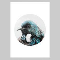 """Aubrey"" Tui Circle Art Print by Margaret Petchell NZ Art Prints, Art Framing Design Prints, Posters & NZ Design Gifts Nz Art, Circle Art, Paintings I Love, Art Object, Giclee Print, Art Prints, Gallery, Gifts, Animals"