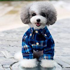 Elegante Grids clássico padrão de camisa para animais de estimação (cães variadas cores, tamanhos) – BRL R$ 54,68