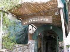 Front Entrance of La Tagliata - #1 rated restaurant in Positano.  All food made fresh from the garden everyday by Mamma.  High on the cliff.  They will pick you up.  No Seafood!  Can't Wait!!