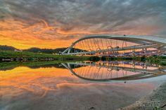 最美的鋼拱吊索橋 新店陽光橋