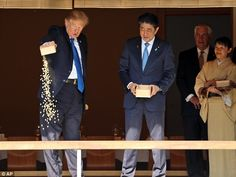Donald Trump dumps a box of fish food into koi carp pond | Daily Mail Online