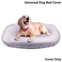 JoicyCo Dog Bed Cover Pet Bed Covers Convenient Case Washable Scratch Proofing Anti-Slip Bottom,Universal to Majority Dog Beds Grey L - Dog Store Couch Pet Bed, Pet Beds, Kitten Beds, Personalized Dog Beds, Round Dog Bed, Designer Dog Beds, Dog Store, New People, Animal Pillows
