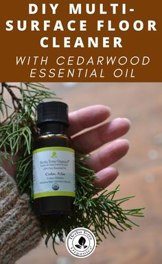 DIY multi-surface cleaner with Cedarwood essential oil - Trend Natural Cleaning Recipes 2019 Cedarwood Oil, Cedarwood Essential Oil, Lemon Essential Oils, Essential Oil Diffuser, Cinnamon Essential Oil, Cinnamon Oil, Natural Cleaning Recipes, Natural Cleaning Products, Cold And Flu Relief