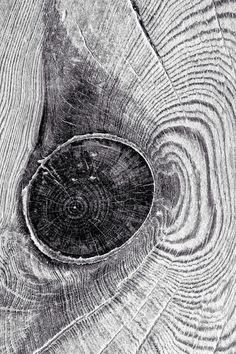 Don Jackson | wood knot Patterns In Nature, Textures Patterns, Print Patterns, Background For Photography, Abstract Photography, Handmade Books, Black And White Pictures, Wabi Sabi, Motifs