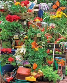 Springbok Jigsaw Puzzle - Garden Delights