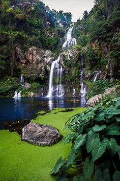 Waterfall of the Bassin des Aigrettes on La Reunion Island, French Overseas Territory in the Indian Ocean ✯ ωнιмѕу ѕαη∂у
