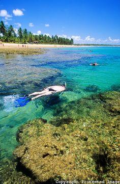 Homem pratica mergulho nas águas cristalinas e mornas, nos recifes de Taipu de Fora, na península de Maraú, município de Maraú, estado da Bahia, nordeste do Brasil.