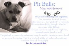 Make a difference for these dogs they need to ve loved most pitbulls are sweeter than most chihuahuas people make pitbulls this way! Punish the deed not the breed!!