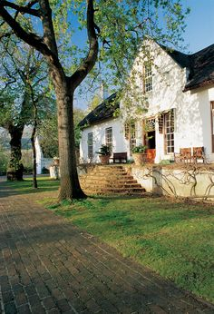 Rustenberg Manor House on Rustenberg Wine Estate, Stellenbosch Cape Dutch, Thatched Roof, Wineries, Countryside, South Africa, Vineyard, Buildings, Architecture, Plants