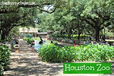 Houston Zoo ~ Houston, TX - R We There Yet Mom? | Family Travel for Texas and beyond...