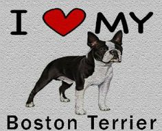 I Love My Boston Terrier Cutting Board - Great For Kitchens by MyHeritageWear. $34.95. Save 22%!