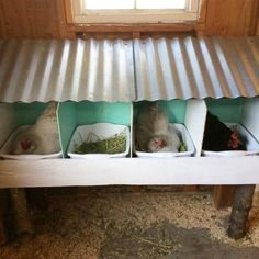 nesting boxes with removable tubs #chickencooptips #DIYchickencoopplans