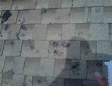 Hail Damage On Clients Home Vinyl Siding In This Picture