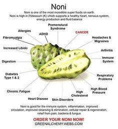 This is a nice image. Buyer beware: If you buy noni juice make sure that it has no other fruit juices added! Pure noni juice in a glass bottle is best! Our GP Noni is wild harvested and of the highest quality you will find. Fruit Juice Image, Best Fruit Juice, Healthy Fruit Desserts, Healthy Fruit Smoothies, Healthy Fruits, Tips And Tricks, Is Almond Milk Healthy, Juice Store, Puerto Rico
