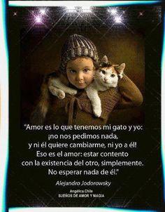 SUEÑOS DE AMOR Y MAGIA: Mi gato y yo