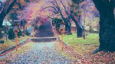 Fotografía The path to God por Nok Lek Phu en 500px