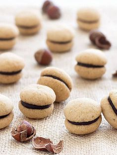 Baci di Dama ( Italian Hazelnut Cookies): two buttery hazelnut cookies sandwiched together with a dollop of dark chocolate. Perfect with a cup of coffee or espresso! #cookies #italian #hazelnut #chocolate #easyrecipe | aseasyasapplepie.com
