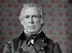 More than 140 years after President Zachary Taylor reportedly died from the overconsumption of cherries, one woman became convinced he'd been poisoned. There was only one way to confirm this: the body would have to be exhumed.