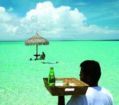 Guana Island, British Virgin Islands Activities & Info