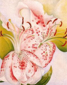 Georgia O'Keeffe Pink Spotted Lily II 1936 - Oil Paintings and Reproduction Art
