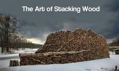 Funny pictures about The right way to stack wood. Oh, and cool pics about The right way to stack wood. Also, The right way to stack wood. Stacking Wood, Stacking Firewood, Firewood Storage, Just Amazing, Awesome, Communication Art, Arts Award, Wood Tree, Autumn Trees