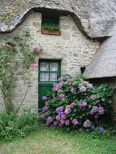 La Briere, Loire Atlantique_ France
