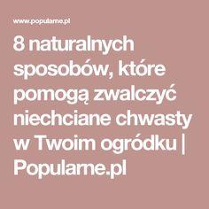 8 naturalnych sposobów, które pomogą zwalczyć niechciane chwasty w Twoim ogródku | Popularne.pl