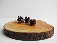 Wood Slab Cake Stand Wood Centerpiece Wood Slice by DaliasWoodland, €19.00