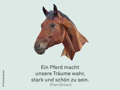 """""""Ein Pferd macht unsere Träume wahr, stark und schön zu sein."""" Sprüche, Zitate, Pferde"""