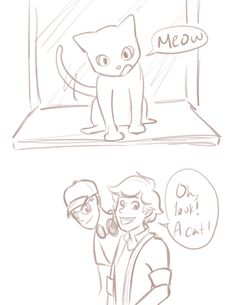 For all the Miraculous Shipping trash I am