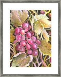 Pink Grapes in Sunlight Framed Print by Sabina Von Arx Poster Prints, Framed Prints, Art Prints, Vegetable Painting, Hanging Wire, Wood Print, Clear Acrylic, Sunlight, Paintings