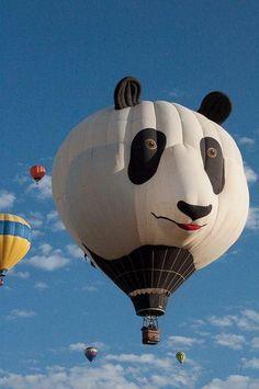 Balloon panda c: Big Panda, Panda Love, Cute Panda, Panda Panda, Panda Craft, Vintage Neon Signs, Happy Fun, Kawaii, Zebras