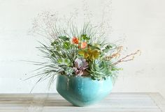 overgrown succulents - Google Search