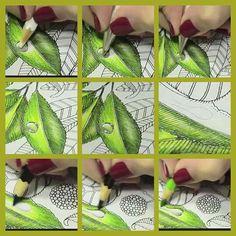 Jardim Secreto by eileen Secret Garden Coloring Book, Coloring Book Art, Coloring Tips, Colouring Pages, Adult Coloring Pages, Leaf Coloring, Colored Pencil Tutorial, Colored Pencil Techniques, Coloring Tutorial