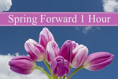 """Apartment Residents Spring Time Change  We officially """"spring forward"""" at 2am on Saturday night/Sunday morning, March 11. Daylight Saving Time officially turns 100 this year. The day was enacted on March 19, 1918 by the federal government as a way to conserve coal during World War I. While ..."""