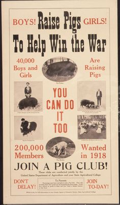 "File:""Boys^ Raise Pigs To Help Win The War. Girls^ 40,000"