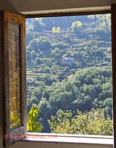 Sicilian window. https://sicilyinsideandout.com/