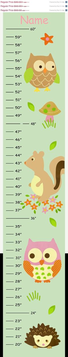 MEGA SALE SALE Personalized Owl with Sage Green Background Canvas Growth Chart