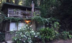 Garden Design Ideas - DuJour