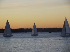 The City of Sails #Auckland New Zealand