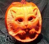 Famous Pumpkin Carvers - Bing Images