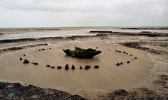 Norfolk mudflats in Elly Griffith's Ruth Galloway series.