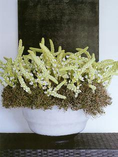 Arranjo de flores em vaso branco
