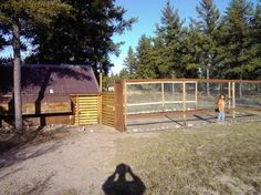 MY CHICKEN COOP PROJECT        I went out back Cut some Logs and Set them in the ground. This...