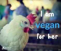 Go vegan save live #vegan